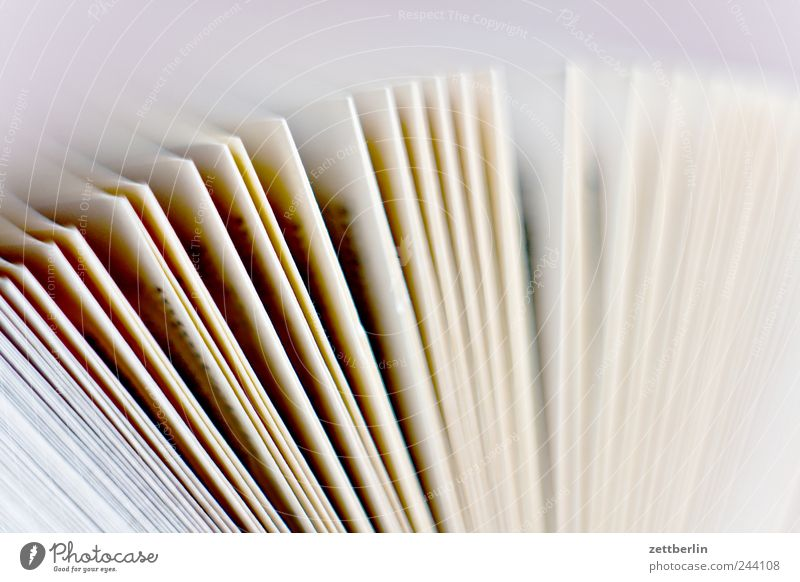 paper Media Print media Book Fantastic Page To leaf (through a book) Colour Guide Academic studies Reading matter Colour photo Subdued colour Close-up Detail