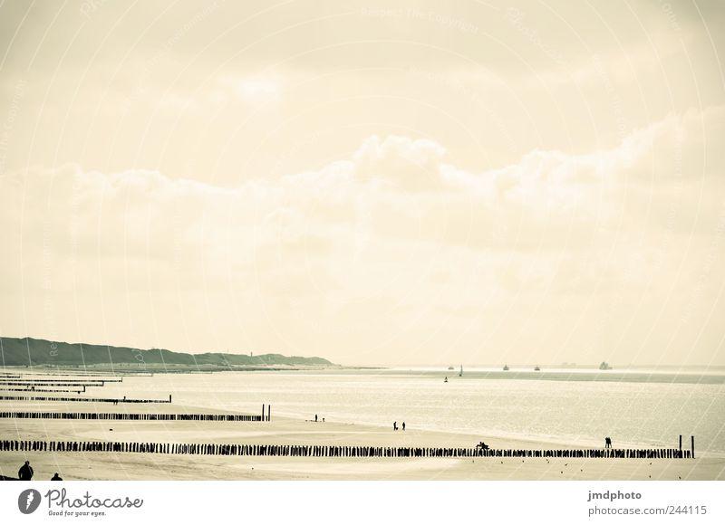 Joy Summer Vacation & Travel Beach Ocean Clouds Freedom Happy Coast Bright Waves Going Trip Walking Tourism
