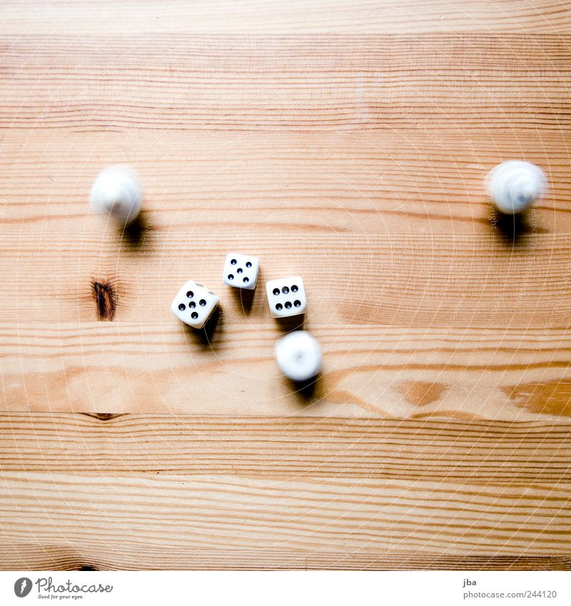 White Beautiful Calm Playing Wood Movement Bright Brown Gold Elegant Dice Lie Speed Esthetic Digits and numbers Branch