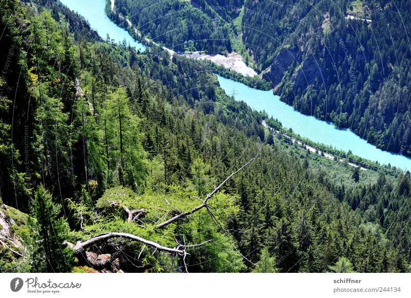 Turquoise is Inn Nature Landscape Water Beautiful weather Forest Hill Rock Alps Mountain River bank Exceptional Slope The deep Coniferous forest Branch Valley