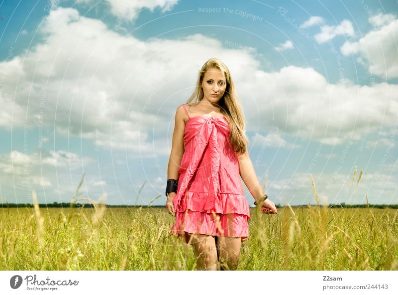 sunshine Lifestyle Elegant Relaxation Feminine Young woman Youth (Young adults) Nature Sky Summer Meadow Dress Jewellery Blonde Long-haired Touch To enjoy