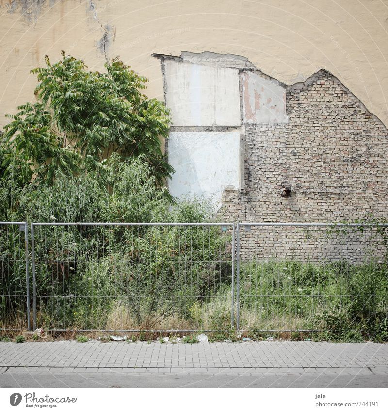 Tree Plant House (Residential Structure) Street Wall (building) Grass Lanes & trails Wall (barrier) Building Facade Construction site Bushes Manmade structures Fence Dismantling Building for demolition