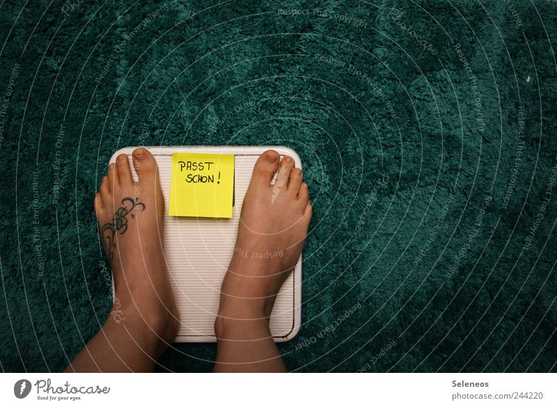Human being Nutrition Legs Feet Signs and labeling Characters Stand Living or residing Bathroom Signage Soft Piece of paper Cuddly Diet Carpet Ornament