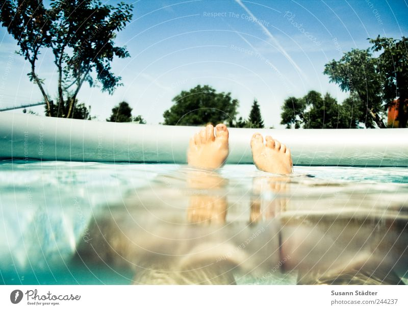 Human being Woman Water Tree Summer Adults Relaxation Garden Legs Feet Leisure and hobbies Swimming & Bathing Drops of water Wellness Hover Cloudless sky