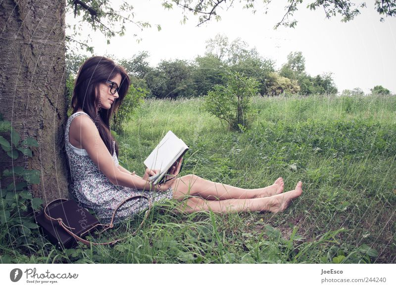 Woman Sky Nature Beautiful Tree Plant Calm Adults Relaxation Freedom Landscape Grass Garden Contentment Leisure and hobbies Book