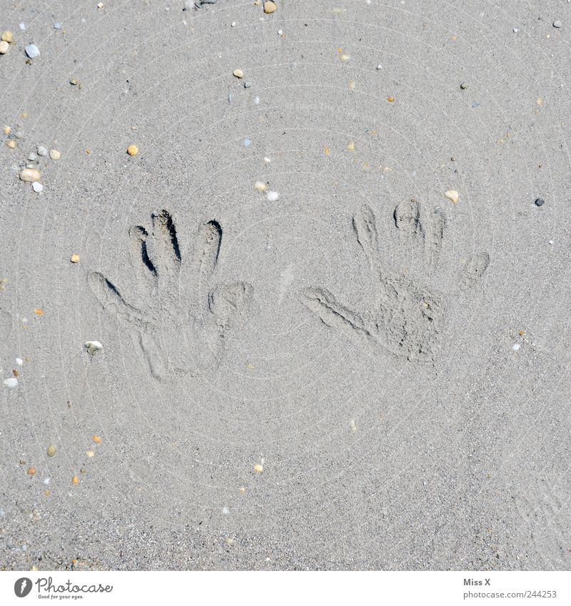 walk of fame Vacation & Travel Summer vacation Beach Toddler Hand Fingers Brown Sand Stone Mussel Sandy beach Fingerprint Imprint Colour photo Subdued colour