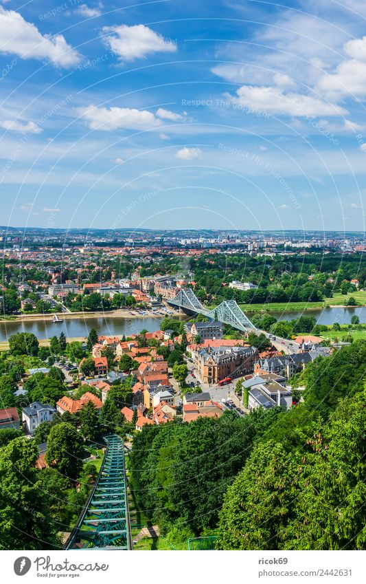 View over the Elbe to Dresden Vacation & Travel Tourism House (Residential Structure) Clouds Tree Park River Bridge Building Architecture Tourist Attraction