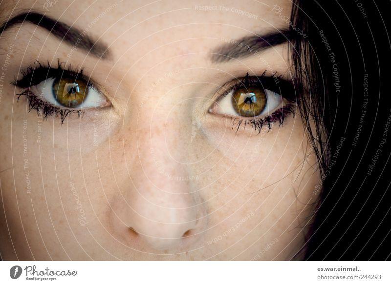 Green Eyes Feminine Emotions Hair and hairstyles Observe Mirror Watchfulness Eyebrow Honest Iris