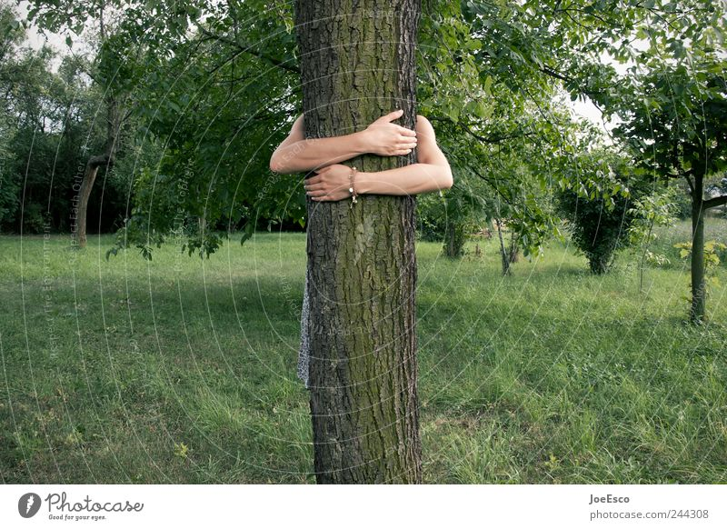 Woman Nature Tree Vacation & Travel Summer Adults Relaxation Playing Environment Freedom Emotions Grass Garden Friendship Leisure and hobbies Arm