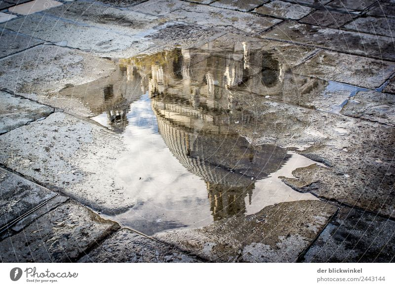 Attention puddle! Venice Dome Tourist Attraction Landmark Monument Historic Wet Natural Puddle Reflection Colour photo Exterior shot Experimental Day Light