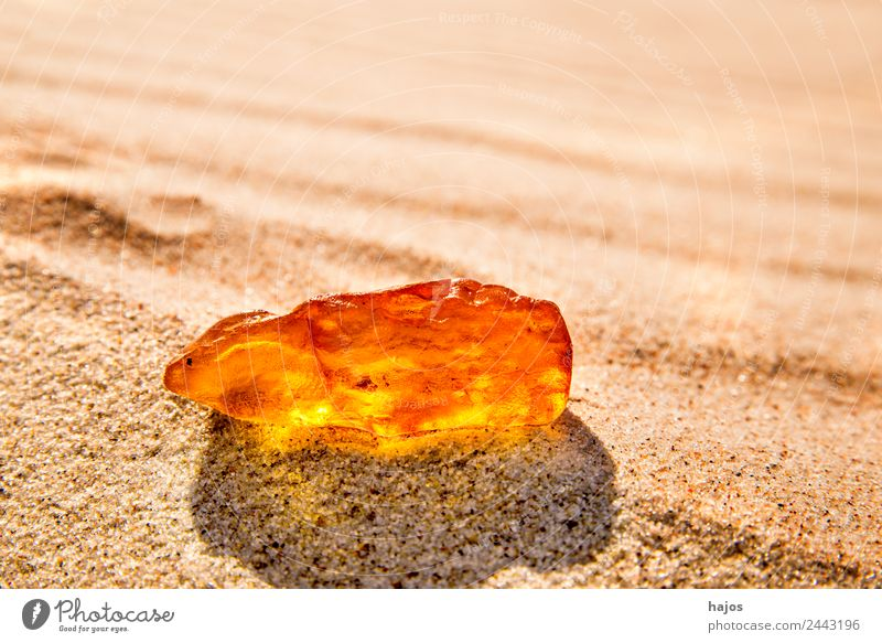 Amber at the Baltic Sea beach Healthy Beach Nature Sand Ornament Old Glittering Yellow Brilliant luminescent Bright sunny Poland healing stone naturopathic