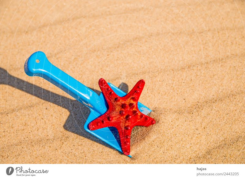 Sandy beach with toy shovel and starfish Joy Relaxation Vacation & Travel Summer Beach Child Blue Yellow Red Tourism Shovel Toys Starfish spi play in sand