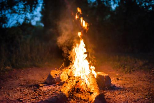 Bonfire in forest Joy Leisure and hobbies Vacation & Travel Tourism Trip Adventure Expedition Camping Summer Feasts & Celebrations Nature Landscape Fire Water