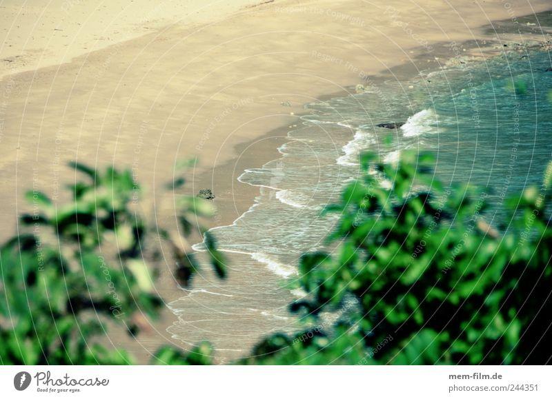 like sand on Loneliness Untouched Idyllic beach Thailand koh lanta Vacation & Travel White Ocean Tourist Deserted Empty Uninhabited
