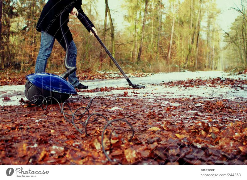 We want summer! Lifestyle Leisure and hobbies Playing Human being Woman Adults Legs Environment Nature Effort Climate Suck Weather Summer Autumn Beautiful Leaf