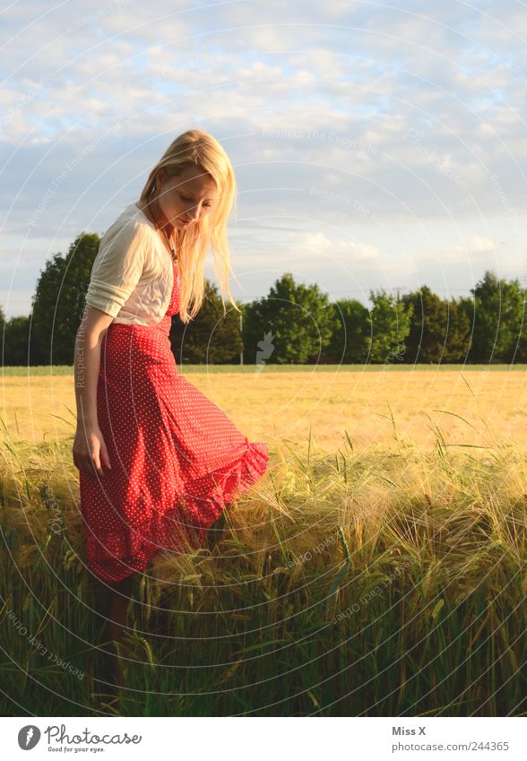 Human being Youth (Young adults) Beautiful Red Summer Calm Feminine Grass Adults Moody Field Blonde Romance Dress Warm-heartedness Idyll