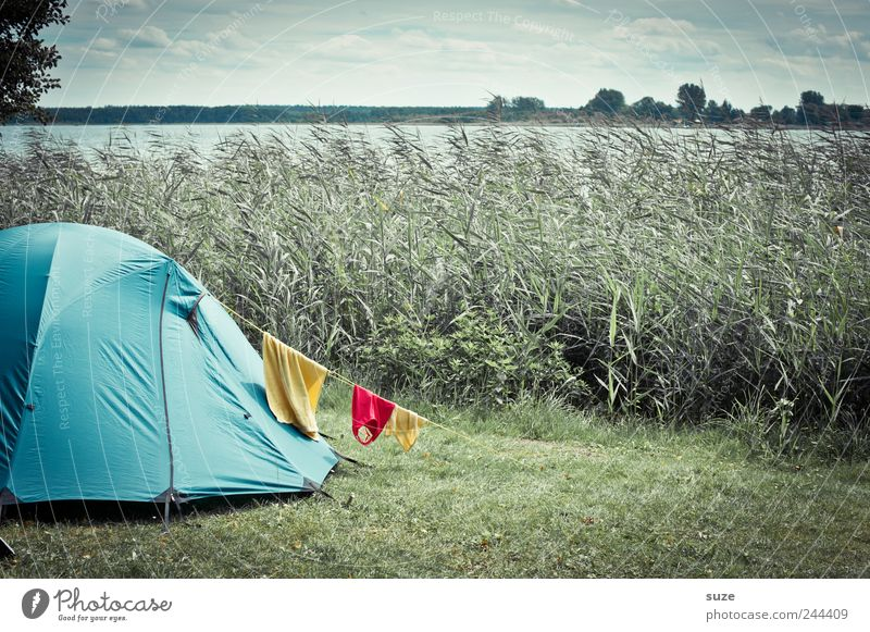 camping Leisure and hobbies Vacation & Travel Trip Camping Environment Nature Landscape Elements Sky Clouds Horizon Summer Bad weather Wind Meadow Lakeside