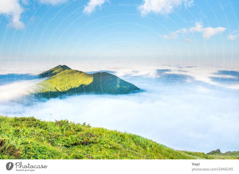 Top of green mountain Vacation & Travel Tourism Adventure Summer Sun Ocean Mountain Nature Landscape Sky Clouds Fog Grass Hill Fantastic Natural Blue Green