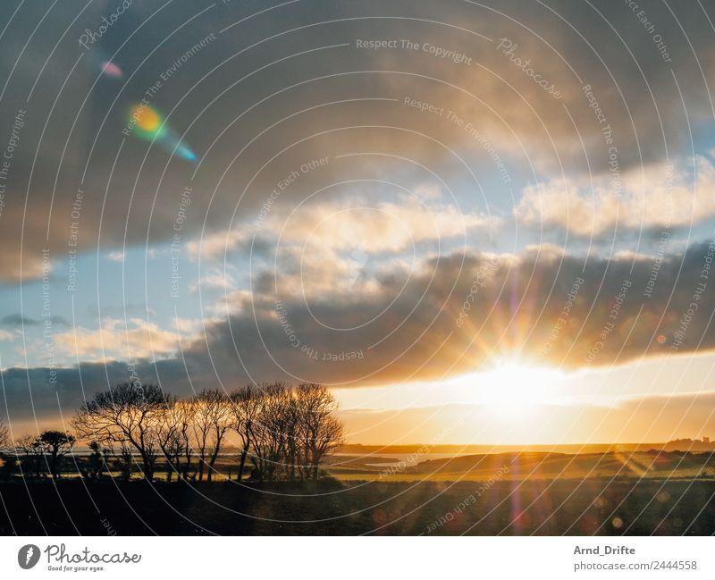 Ireland - Sunset Vacation & Travel Freedom Ocean Island Nature Landscape Plant Sky Clouds Sunrise Sunlight Spring Summer Beautiful weather Tree Field Waves