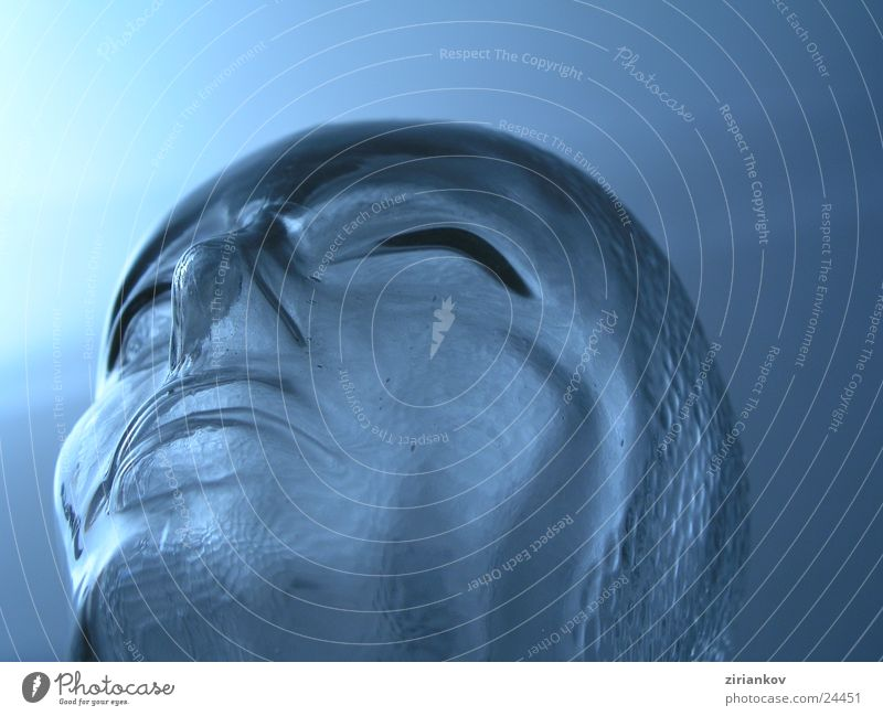 Blue Cold Head Think Glass Living or residing Headphones