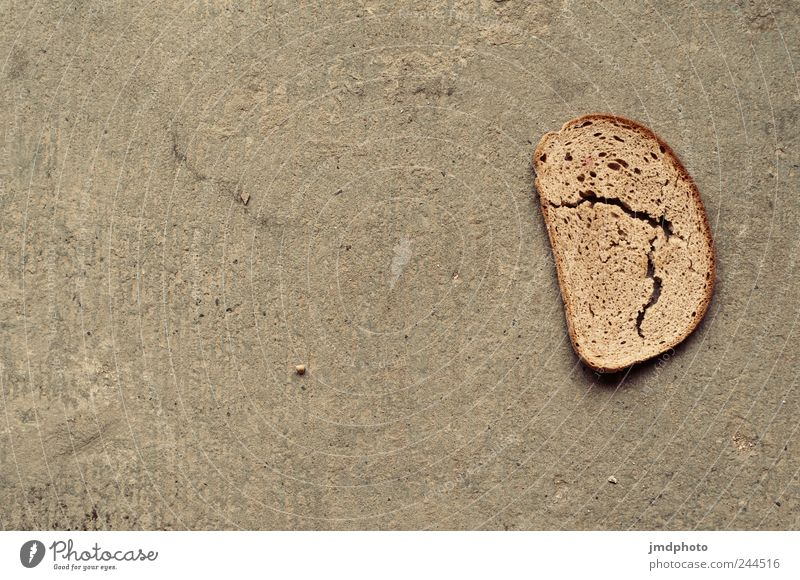 Old Gray Food Dirty Poverty Retro Dry Discover Bread Crack & Rip & Tear To feed Build Disgust Sandwich Dusty Death