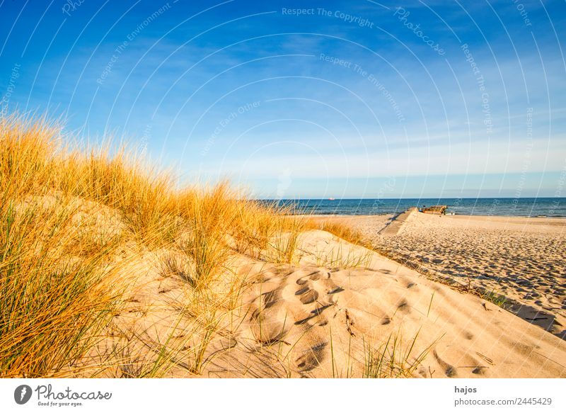 Baltic Sea beach in Poland Vacation & Travel Summer Beach Nature Sand Hill Coast Idyll Tourism Dune marram grass Sky Blue Ocean Empty Lonely vacation Wild