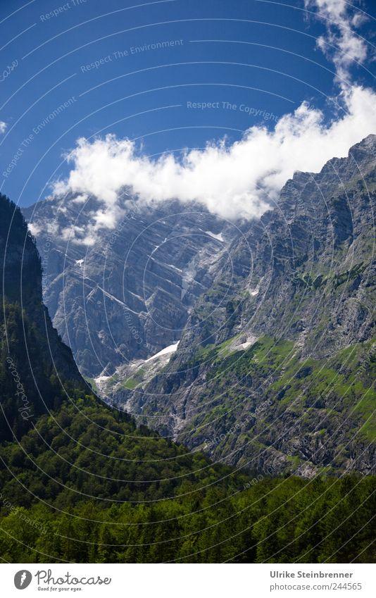 Sky Nature Tree Summer Clouds Loneliness Environment Mountain Landscape Rock Tall Tourism Esthetic Dangerous Bushes Threat