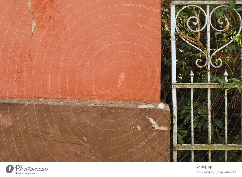 pleasure garden Heart Garden fence Wall (building) Ancient Fence Barrier Plant Colour photo Exterior shot