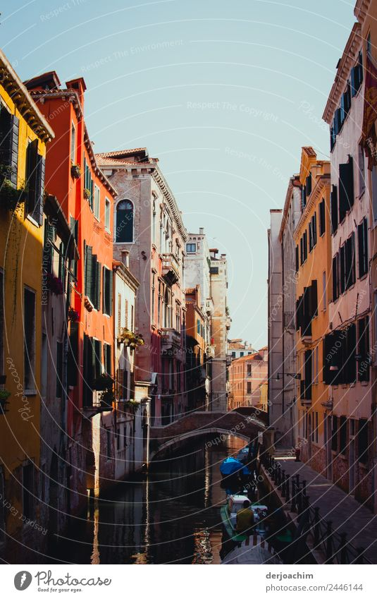 live better Happy Well-being Trip Living or residing Environment Summer Beautiful weather Town Venice Italy Europe House (Residential Structure) Architecture