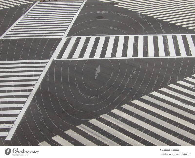 zebra Zebra crossing Traverse Town Loneliness Asphalt Transport Street