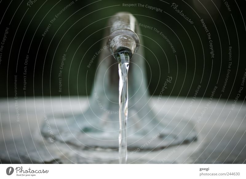 Water Movement Stone Metal Environment Wet Fresh Drinking water Pure Well Fluid Flow Tap Jet of water