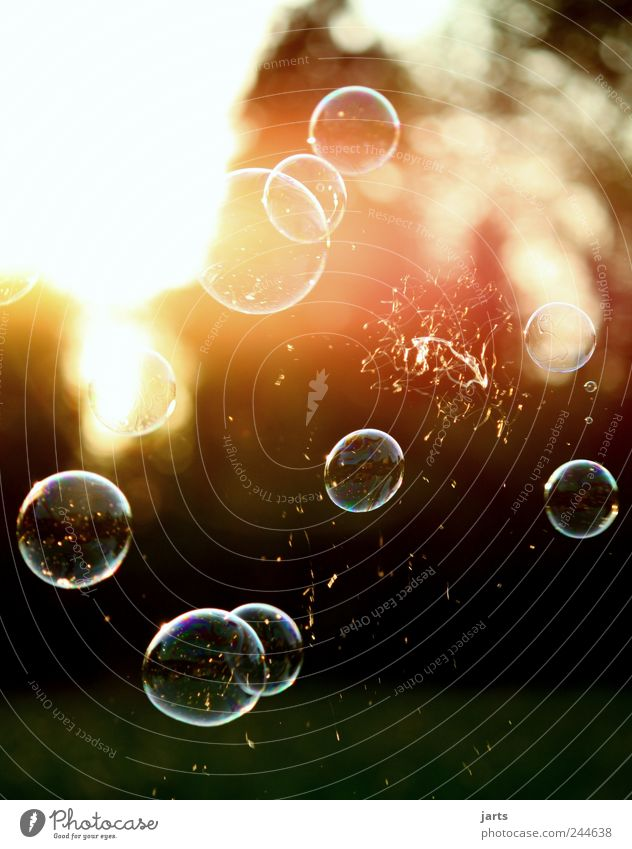 ...when dreams burst... Playing Flying Free Hope Freedom Life Hover Bursting Soap bubble Colour photo Exterior shot Detail Deserted Copy Space top