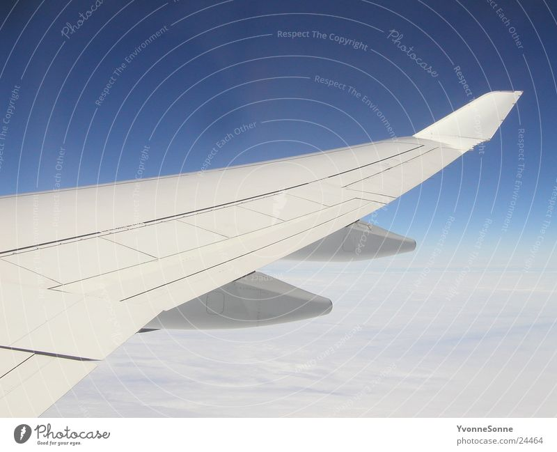 Sky White Blue Clouds Airplane Aviation Wing