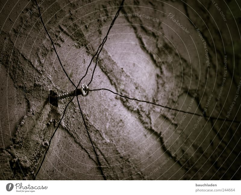 web Concrete Steel Rust Line Net Surrealism Symmetry Colour photo Subdued colour Exterior shot