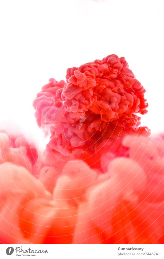 Water Beautiful Red Colour Movement Power Pink Energy Esthetic Transience Infinity Exceptional Smoke Fluid Bizarre Chaos