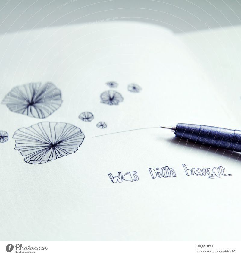 White Line Bright Design Academic studies Round Write Illustration Painting (action, artwork) Draw Pen Creativity Fine Work of art Figure of speech Diary