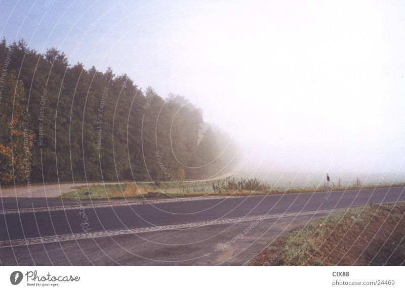 Morning fog 3 Fog Field Loneliness Transport Street Mountain Americas Sky