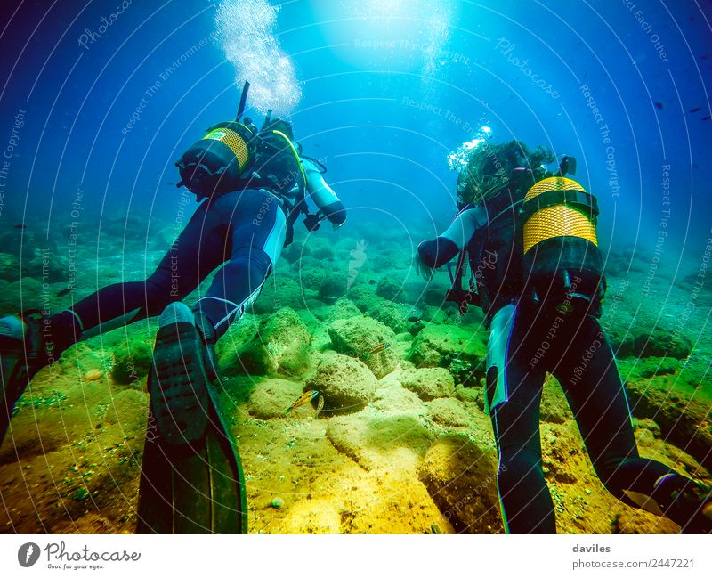 Two persons in their back with scuba diving equipment exploring the ocean floor. Lifestyle Exotic Joy Leisure and hobbies Vacation & Travel Tourism Summer Ocean