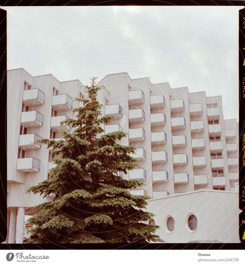Hotel with conifer Architecture Building bedtenburg Facade Balcony White Grid Structures and shapes Arrangement Row Sky Covered Clouds Copy Space Deserted Tree