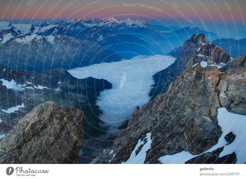 World, down there. Far-off places Mountain Sunrise Sunset Alps Snowcapped peak Above Blue Gold Gray Wake up Sublime Colour photo Exterior shot Deserted Dawn