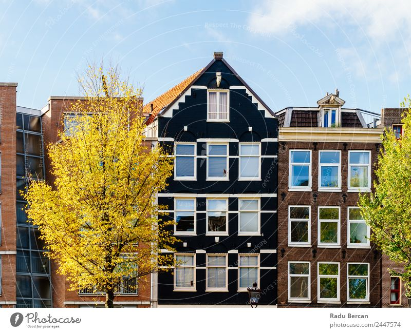 Beautiful Architecture Of Dutch Houses In Amsterdam Sky Vacation & Travel Town Colour Tree House (Residential Structure) Window Autumn Style Building Tourism