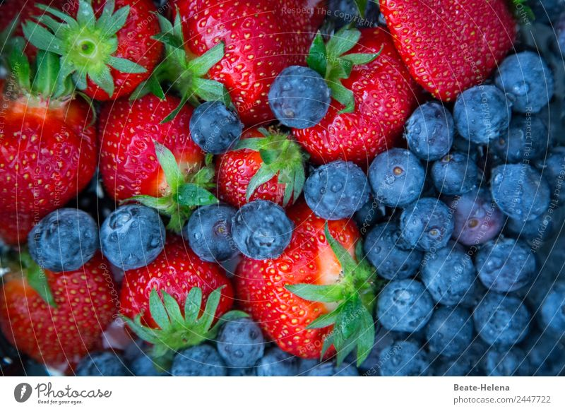 Strawberries and blueberries - delicious vitamin-rich summer fruit Strawberry Blueberry Blue-red Vitamin-rich Spring fruit Summer fruit Delicious salubriously