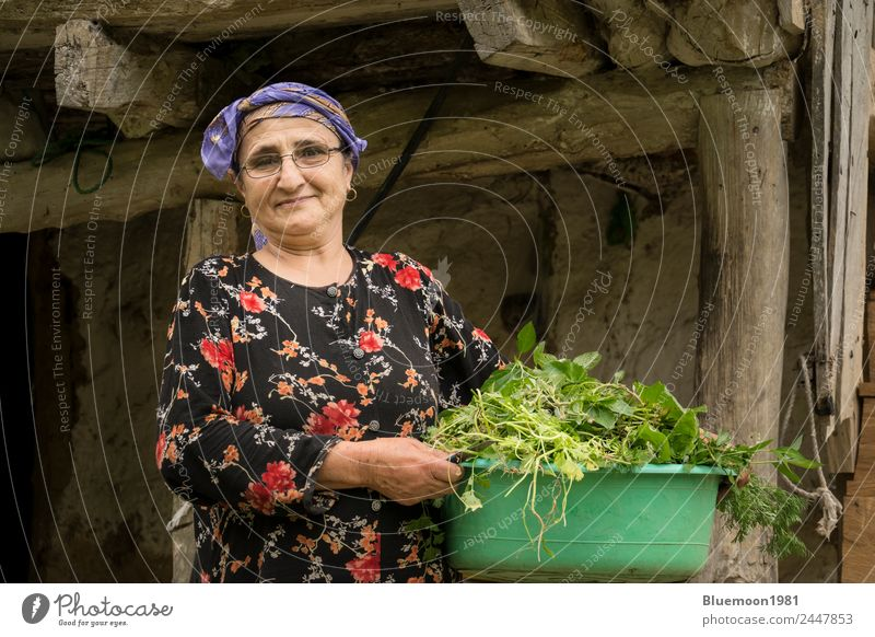 Portrait of an elderly woman picking a vegetable tub Food Vegetable Nutrition Organic produce Vegetarian diet Diet Lifestyle Style Healthy Eating