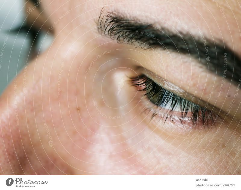 Human being Man Face Eyes Emotions Adults Masculine Eyelash Eyebrow Detail of face