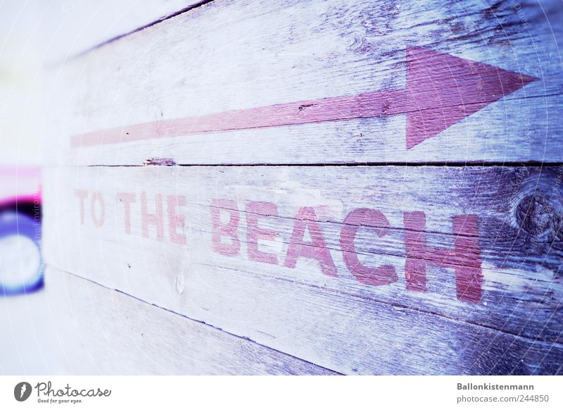 Beach Keyword Signs and labeling Signage Arrow Typography Summer vacation Direction Clue English Beach vacation Capital letter Trend-setting Building line