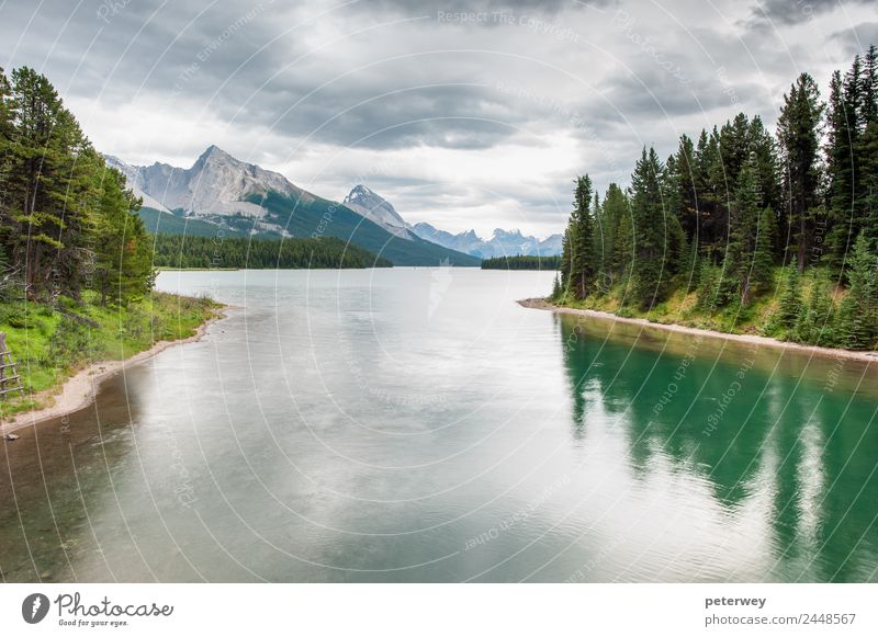 Nature Vacation & Travel Summer Green Clouds Forest Mountain Lake Swimming & Bathing Gray Trip Contentment Hiking Park Canada Nationalities and ethnicity