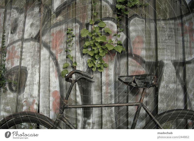 Wall (building) Lanes & trails Wall (barrier) Bicycle Dirty Free Esthetic Authentic Lifestyle Gloomy Break Retro Transience Simple Past Whimsical