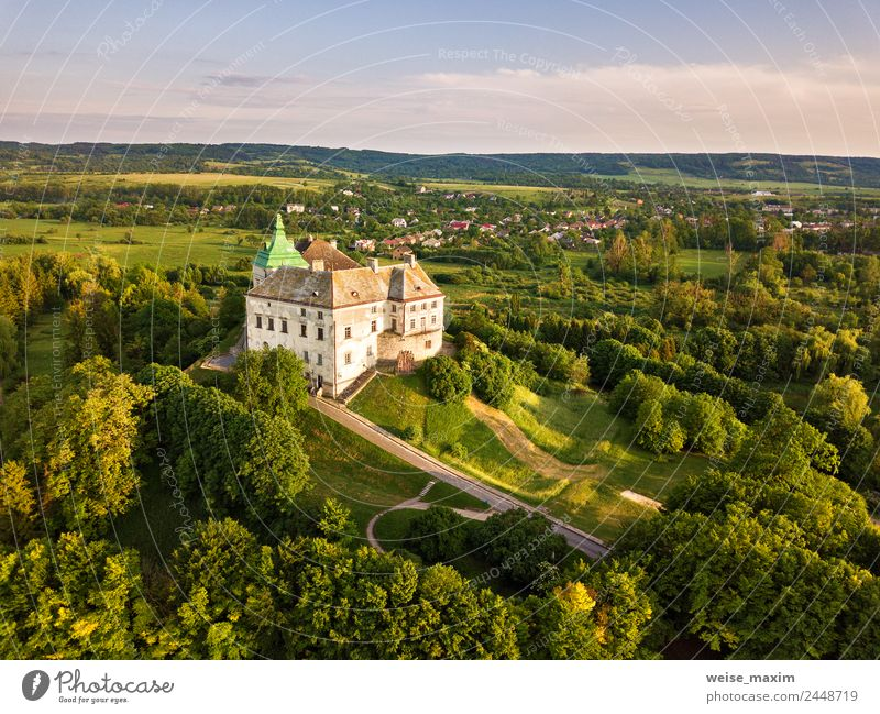 Olesko Palace from the air. Summer park and castle on the hills. Sky Nature Vacation & Travel Old Green Landscape Tree Architecture Spring Meadow Building