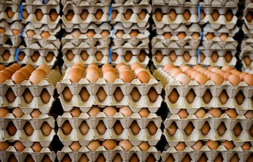 Food Breakfast Egg Many Markets Stack Market stall Intensive stock rearing Eggs cardboard Covered market Egg seller Egg production
