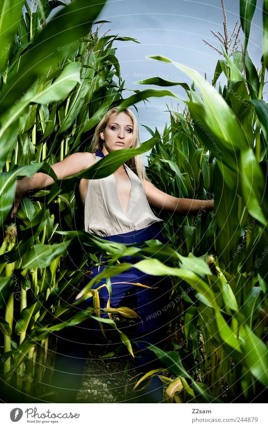 Human being Nature Youth (Young adults) Green Summer Feminine Dark Landscape Adults Style Dream Field Blonde Power Elegant Fashion